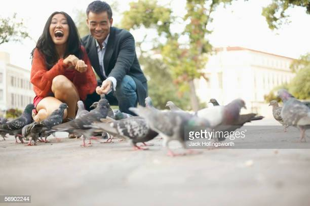 Young couple feeding pigeons