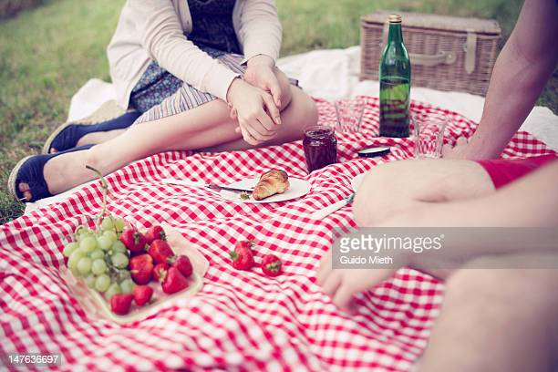Young couple having picnic