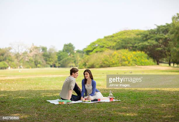 young couple having picnic - picnic stock pictures, royalty-free photos & images