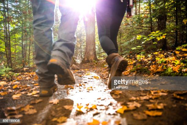 young couple hiking in mountain on a footpath in canada - woodland stock pictures, royalty-free photos & images