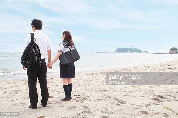 Young couple holding hands on beach, rear view