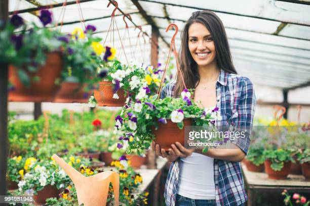 young couple in greenhouse working with flowers - hanging basket stock pictures, royalty-free photos & images