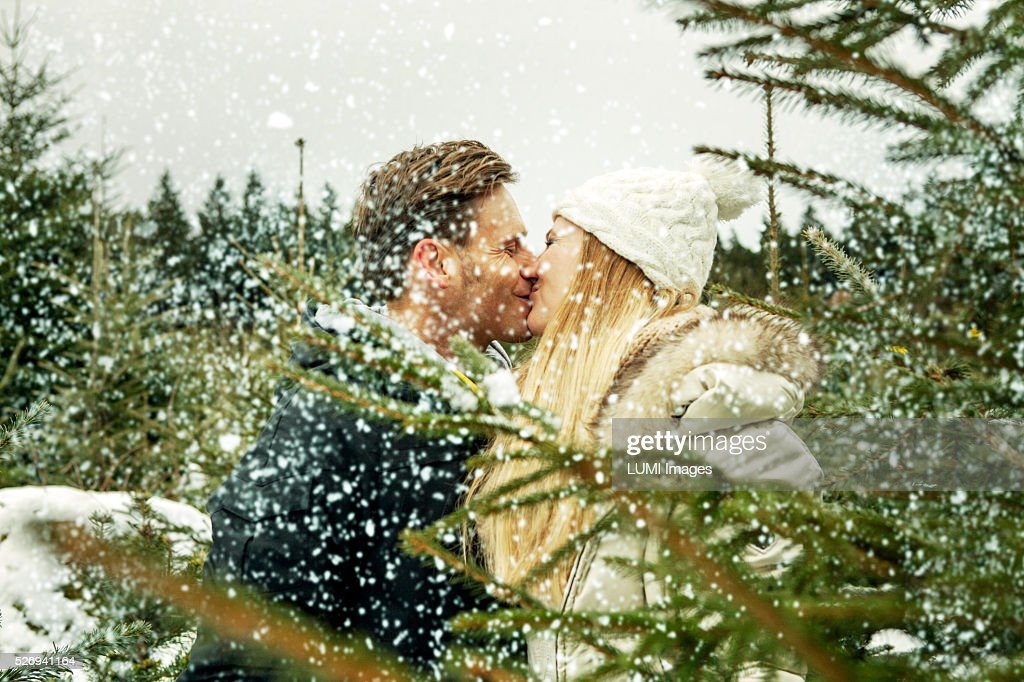 Young couple in love kissing between Christmas trees, Bavaria, Germany : Bildbanksbilder