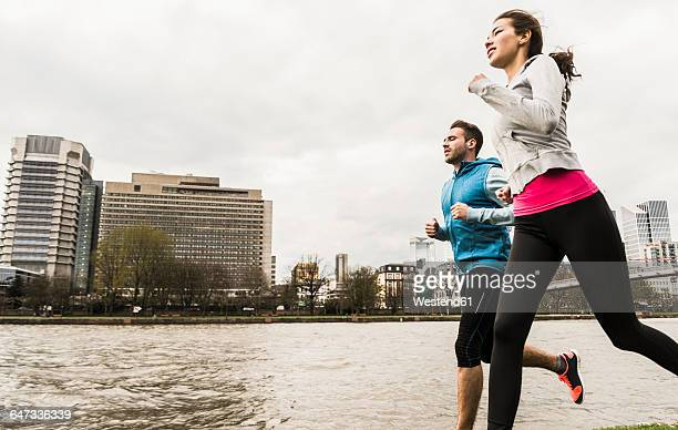 young couple jogging by river - frankfurt main bildbanksfoton och bilder
