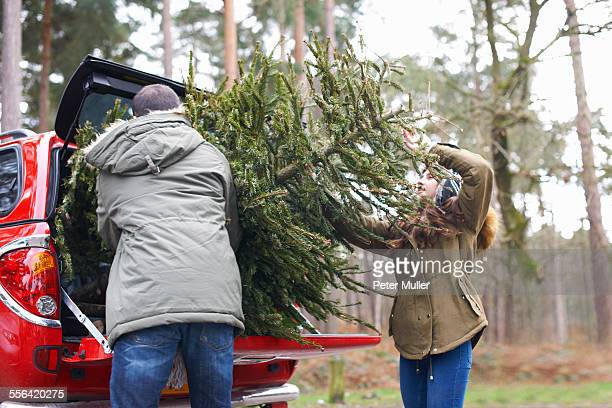 young couple lifting christmas tree into car boot - car decoration stock pictures, royalty-free photos & images