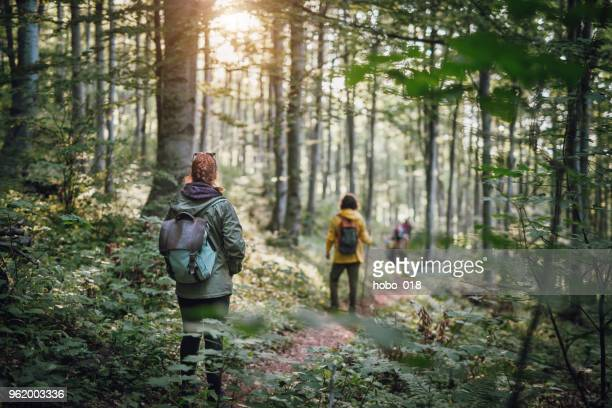 young couple on hiking in the forest - woodland stock pictures, royalty-free photos & images