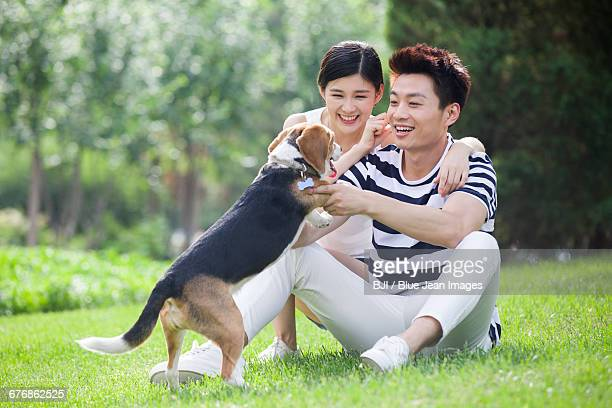 young couple playing with a cute dog - monogamous animal behavior stock photos and pictures
