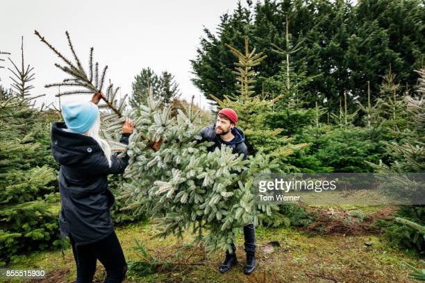 young couple preparing to take pine tree home for christmas - christmas tree farm stock pictures, royalty-free photos & images
