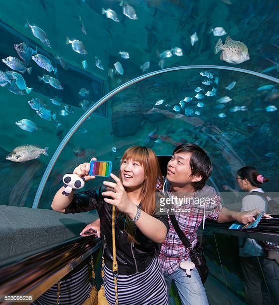Young couple site-seeing at an aquarium