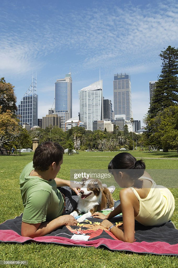 Young couple sitting on towel in park with border collie, rear view : Stock Photo
