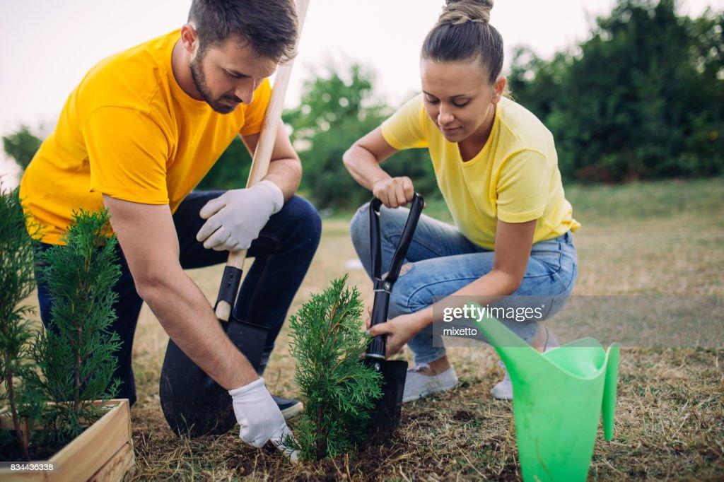 Young couple volunteers : Stock Photo