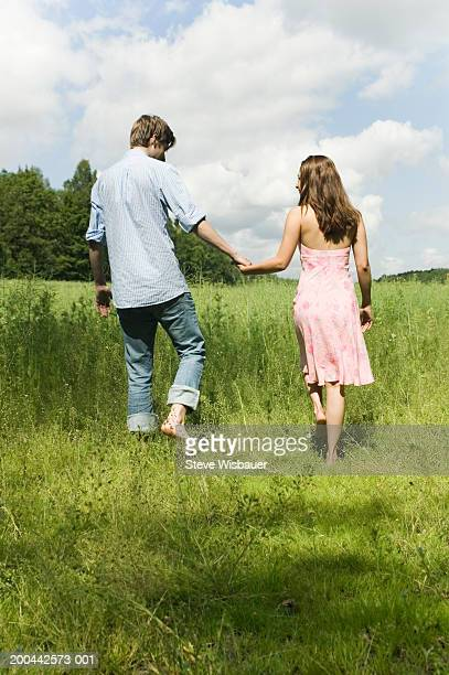 Young couple walking in meadow, holding hands, rear view