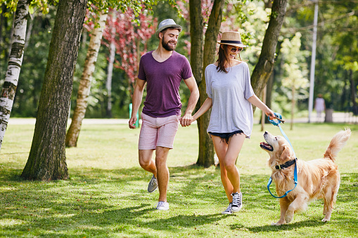 Young couple walking their dog together in the park during summer 1031869012