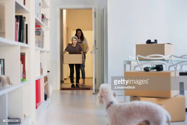 young couple with dog moving in to new apartment - human doormat foto e immagini stock
