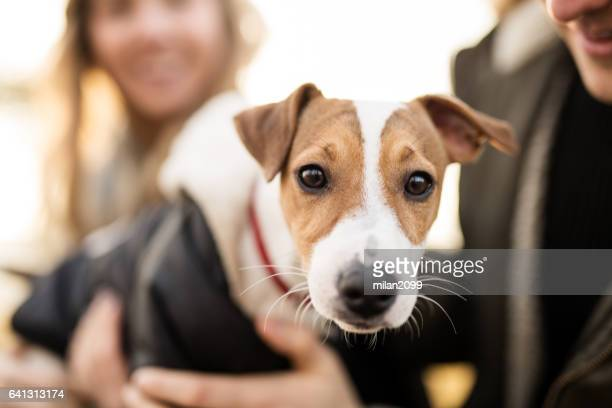 Young couple with their Jack Russell puppy
