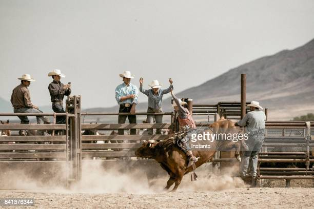 a young cowboy bareback riding on a bucking bull while a group of cowboys watch him in the background. - bucking stock photos and pictures