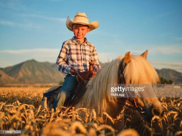 young cowboy rider sin ponny häst - pony play bildbanksfoton och bilder