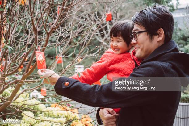 young dad holding her lovely little daughter while picking up a red pocket from a chinese new year tree joyfully. - chinese new year stock pictures, royalty-free photos & images