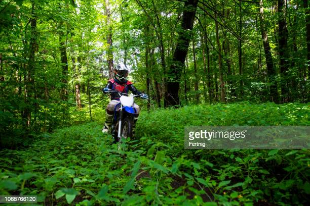 a young dirt bike rider in the woods. - scrambling stock pictures, royalty-free photos & images