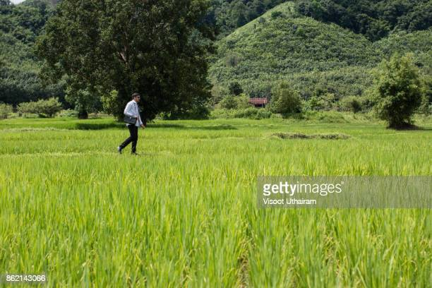 Young docter Pointing Height Destination to Future in the Green Wheat field Searching for the New Startup Opportunities,Community Health and Development Hospital In Remote Areas Development Fund Concept.