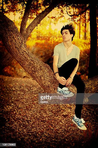 young emo boy portrait, sitting on tree in forest - emo stock photos and pictures