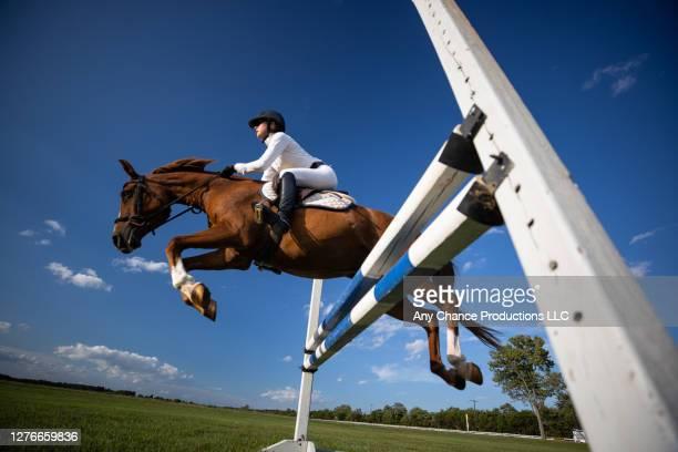 a young equestrain completing a jump - 馬術大会 ストックフォトと画像
