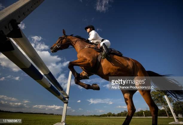 a young equestrain making a jump - evento equestre - fotografias e filmes do acervo