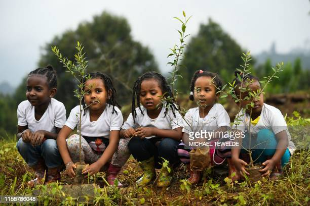 TOPSHOT Young ethiopian girls take part in a national treeplanting drive in the capital Addis Ababa on July 28 2019 Ethiopia plans to plant a...