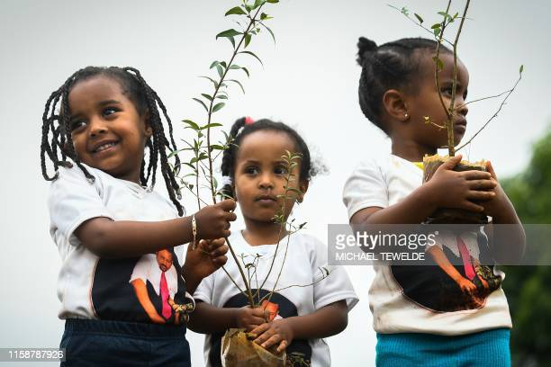 Young ethiopian girls wearing a teeshirt depicting Ethiopia's Prime Minister Abiy Ahmed take part in a national treeplanting drive in the capital...
