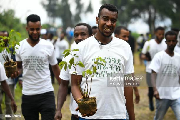 Young ethiopians take part in a national tree-planting drive in the capital Addis Ababa, on July 28, 2019. - Ethiopia plans to plant a mind-boggling...