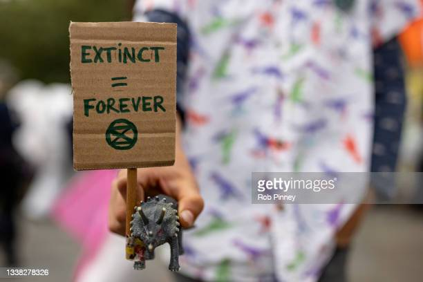 Young Extinction Rebellion protester holds a toy dinosaur with a miniature placard in Trafalgar Square on September 04, 2021 in London, England. Over...
