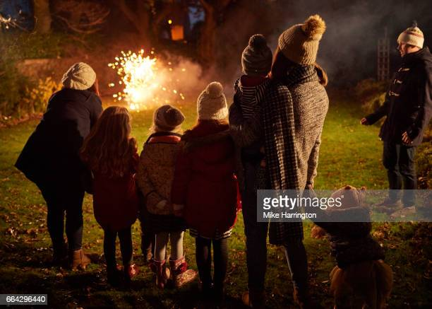 Young family and friends watching fireworks