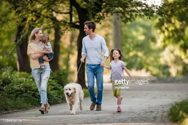 família nova e seu retriever dourado durante o dia de mola no parque. - public park - fotografias e filmes do acervo