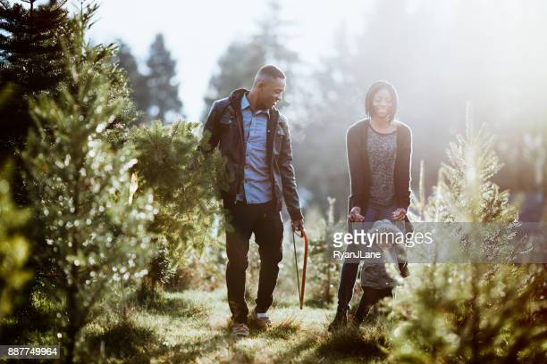 young family carrying christmas tree - christmas tree farm stock pictures, royalty-free photos & images