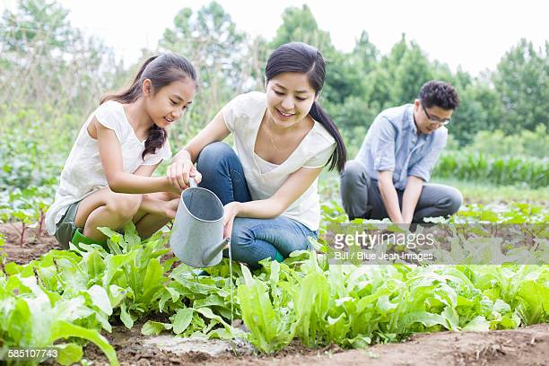 Young family gardening together
