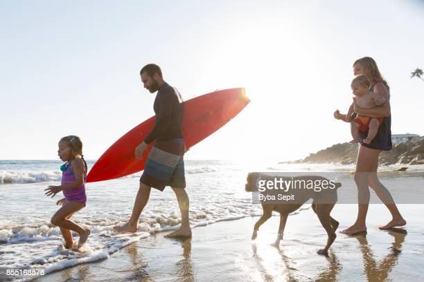 young family goes surfing. - volgen activiteit stockfoto's en -beelden