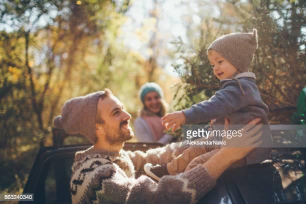 jovem família selecionou sua árvore de natal - família de um filho - fotografias e filmes do acervo
