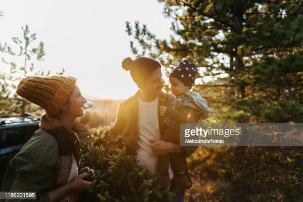 young family on a christmas tree farm - tree farm stock pictures, royalty-free photos & images
