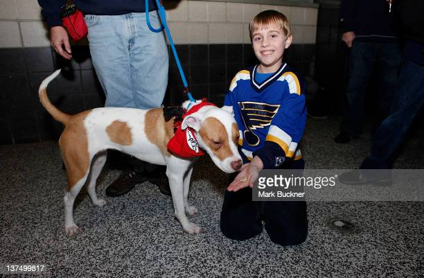 A young fan gives a treat to a dog available for adoption during Barkin' for the Blues a pet adoption event spearheaded by Kelly Backes wife of David...
