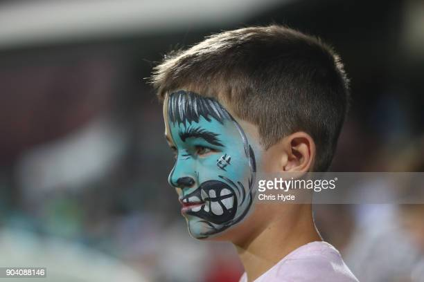 A young fan watches on during the the Women's Big Bash League match between the Brisbane Heat and the Melbourne Stars at Harrup Park on January 12...