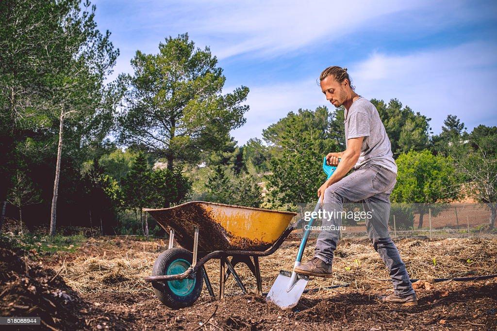 若い農家準備にオーガニックな農産物 : ストックフォト