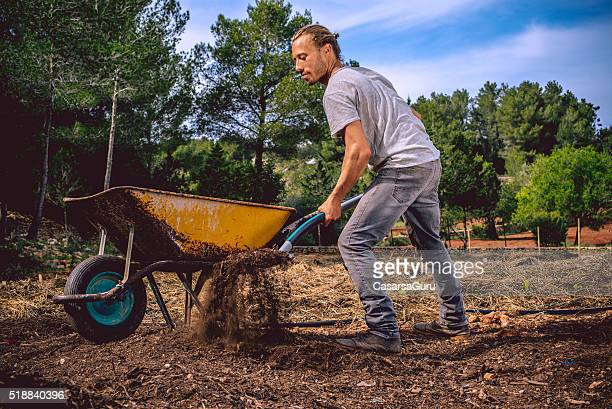 young farmer on the field - wheelbarrow stock photos and pictures