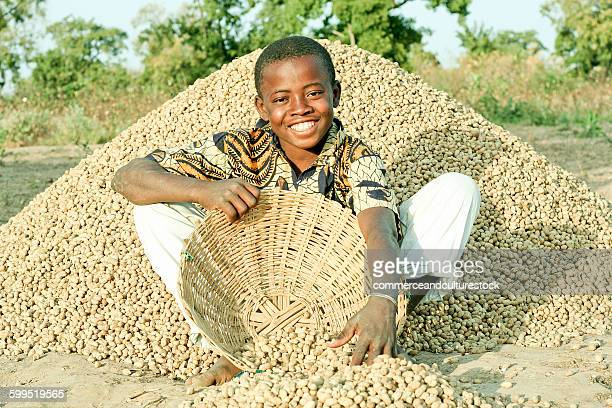 A young farmer picking up peanuts