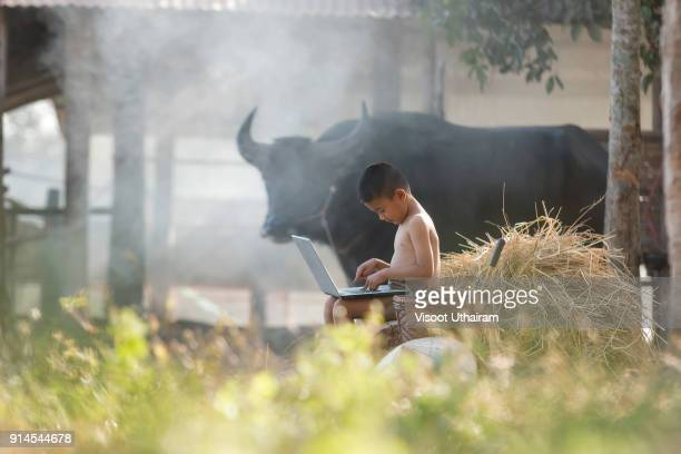 Young farmer playing laptop in farmland at countryside.