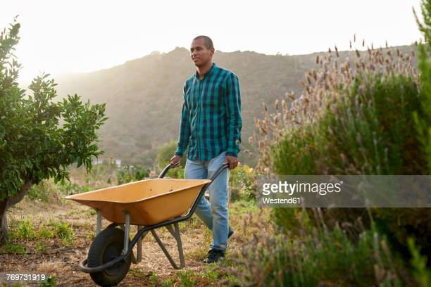 young farmer pushing a wheelbarr - wheelbarrow stock photos and pictures
