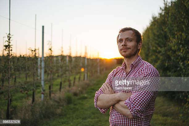 Young Farmer standing in Apple orchard at sunset
