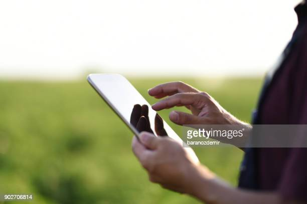 young farmer using a digital tablet - agronomist stock pictures, royalty-free photos & images