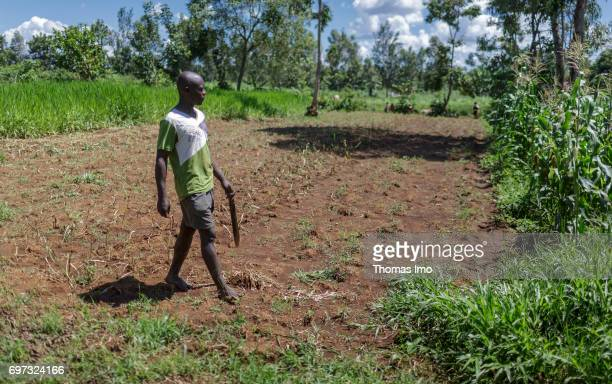 A young farmer walks on his fields in Kakamega County on May 16 2017 in Kakamega County Kenya