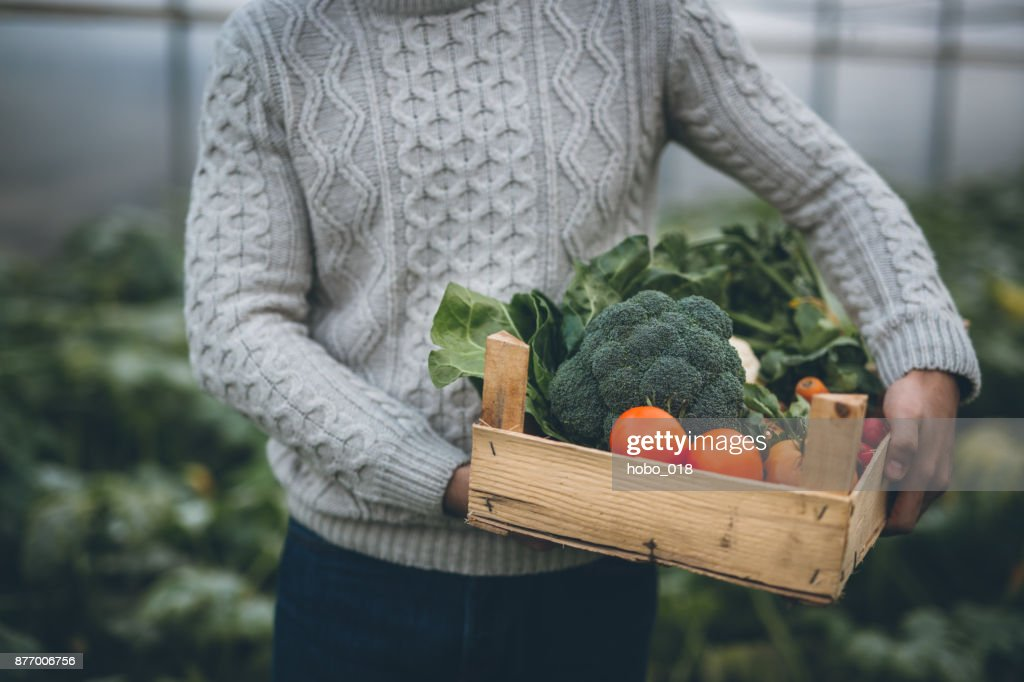 Young farmer with crate full of vegetables : Stock Photo
