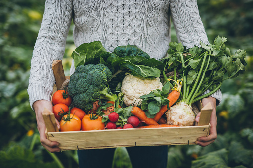 Young farmer with crate full of vegetables 901653798